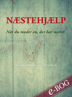 Næstehjælp - E-bog