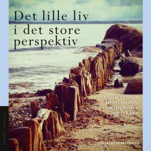 Det lille liv i det store perspektiv